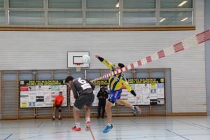 Hallenfaustballturnier 2017 (14)